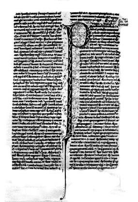 Entrollte Papyrusseite