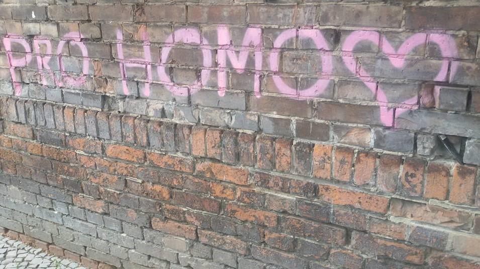 pro homo