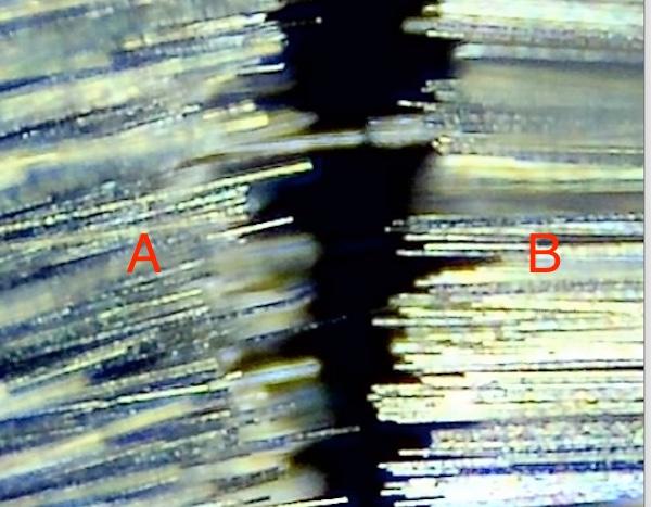 Borstenhaare von zwei verschiedenen Plattenbürsten