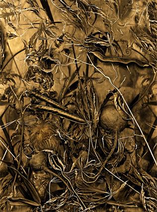 Antonius - EarthArt 3, 80x120cm, 2013
