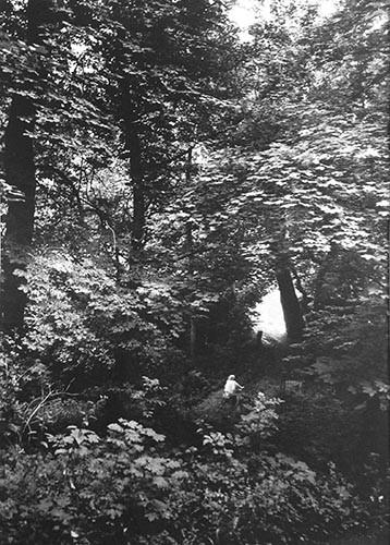 Auf Rad unter Bäumen | analoges Foto / Handabzug S/W | 2005 | Halle