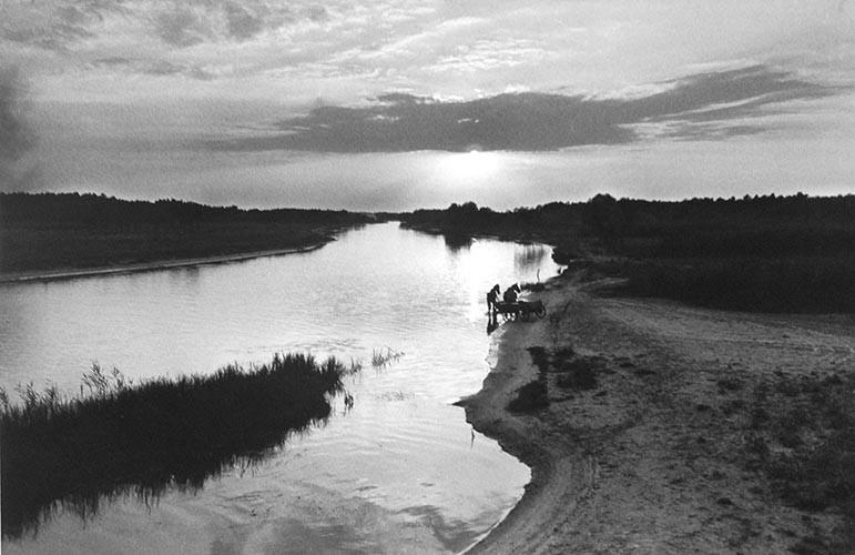 Pferde am Fluss | analoges Foto / Handabzug S/W | 1995 | Dnjepropjetrowsk