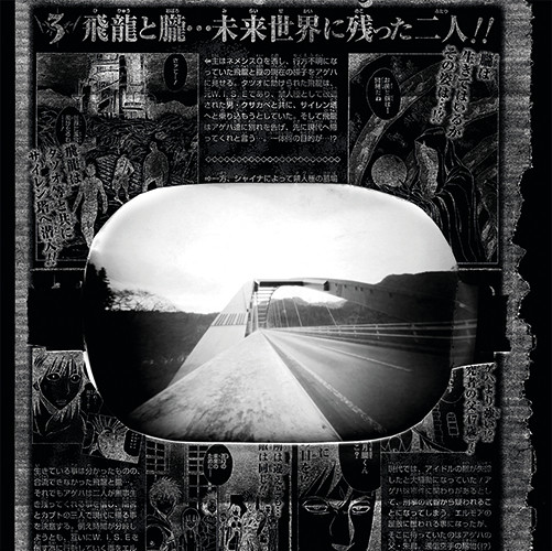 """From cycle (2 of 10 photos) """"Japanmix""""   pinhole camera   22x22 cm   2009"""