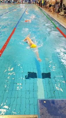Steve Häcker beim Swim & Run Chemnitz.