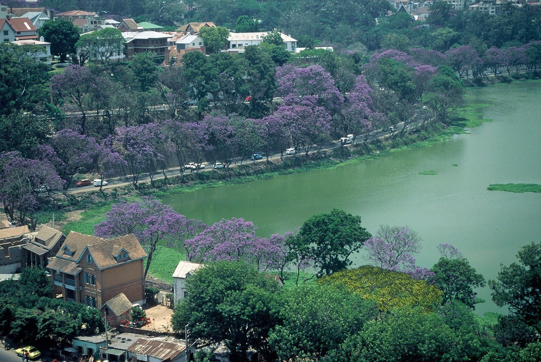 Lac dans la capitale Tananarive (Antananarivo)
