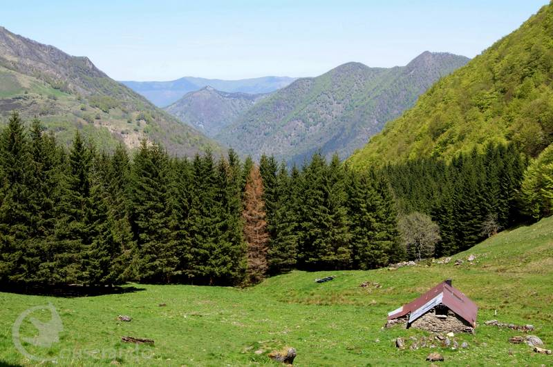 Cabane d'Auzout - Doriane GAUTIER, Couserando - Ariège Pyrénées