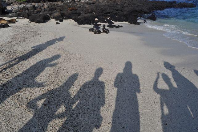 der Strand ist fuer Seeloewen reserviert