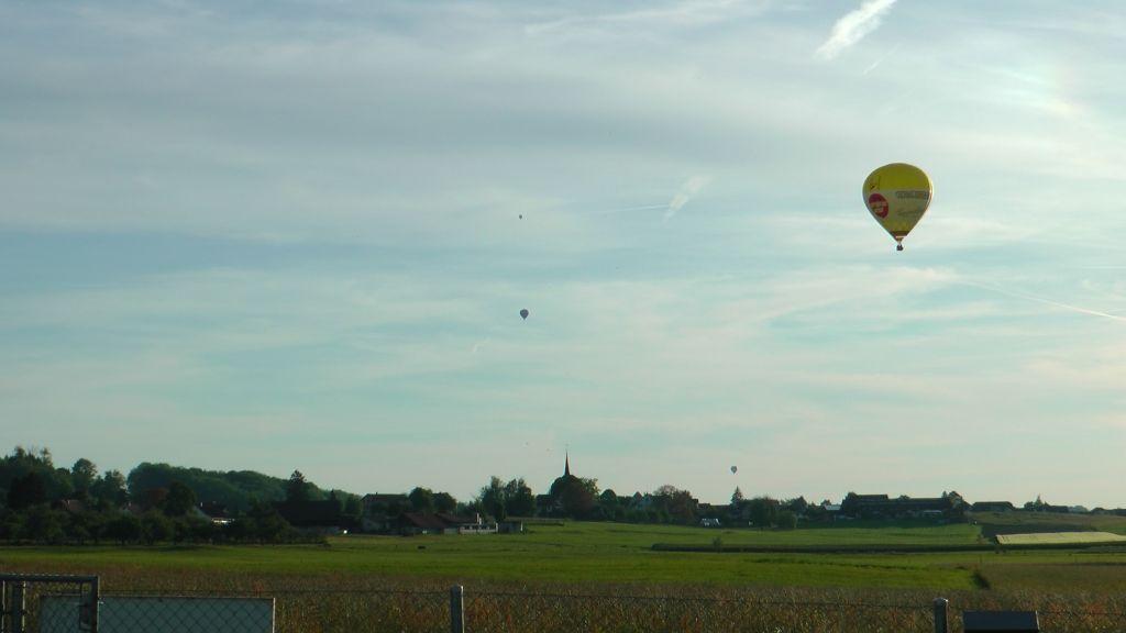 IGG Flachlandfliegen in Amriswil (CH)