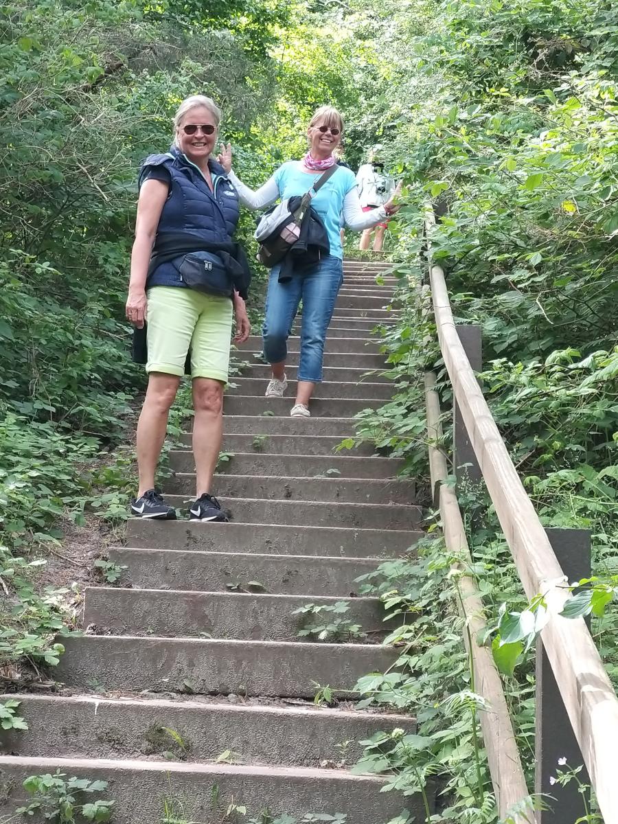 Wanderung am Dornbusch