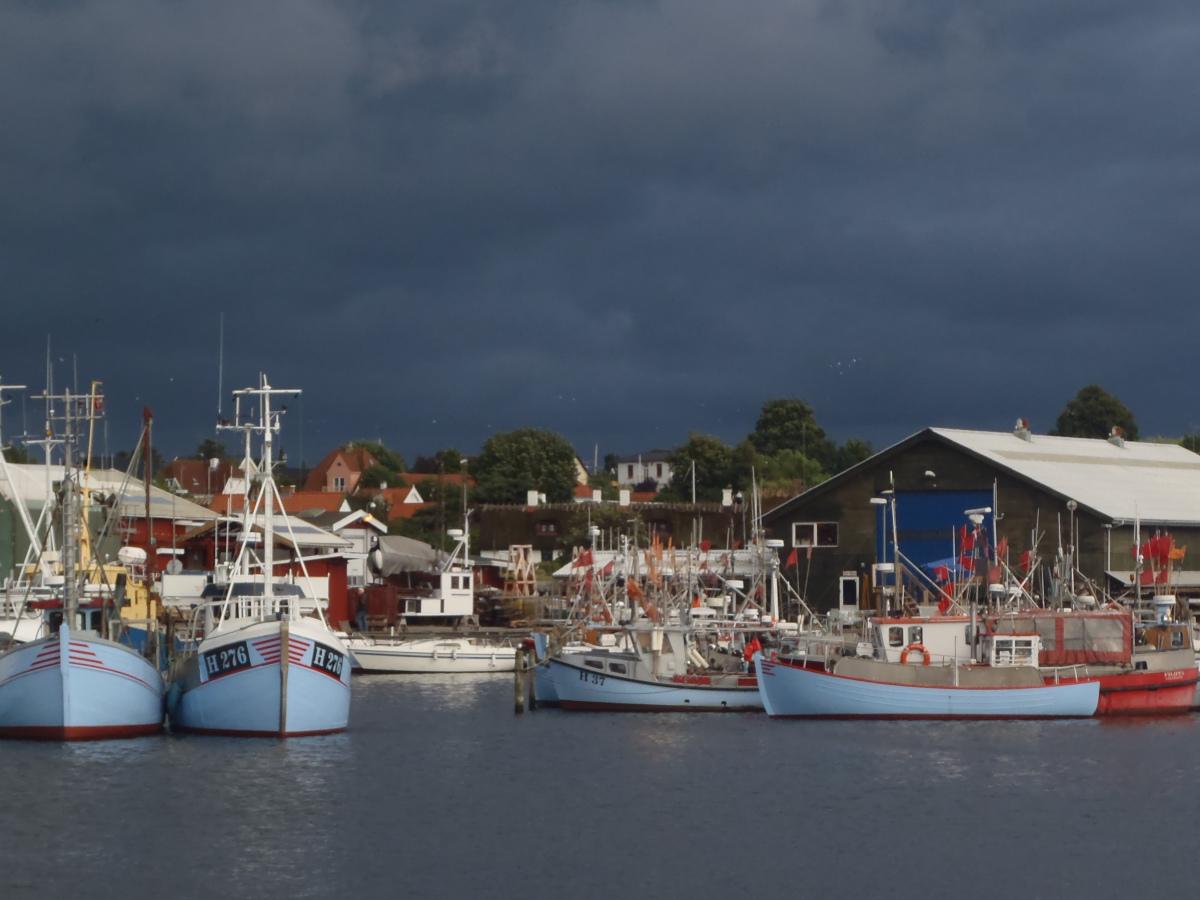 Fischerei in Gilleleje