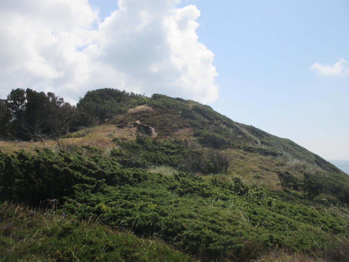 Sönderbjerg: die höchste Düne auf Anholt
