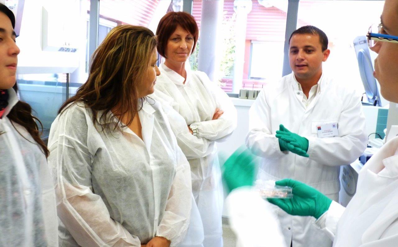 Atelier avec les chercheurs
