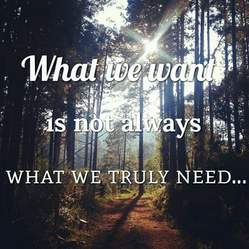 What we want is not always what we truly need