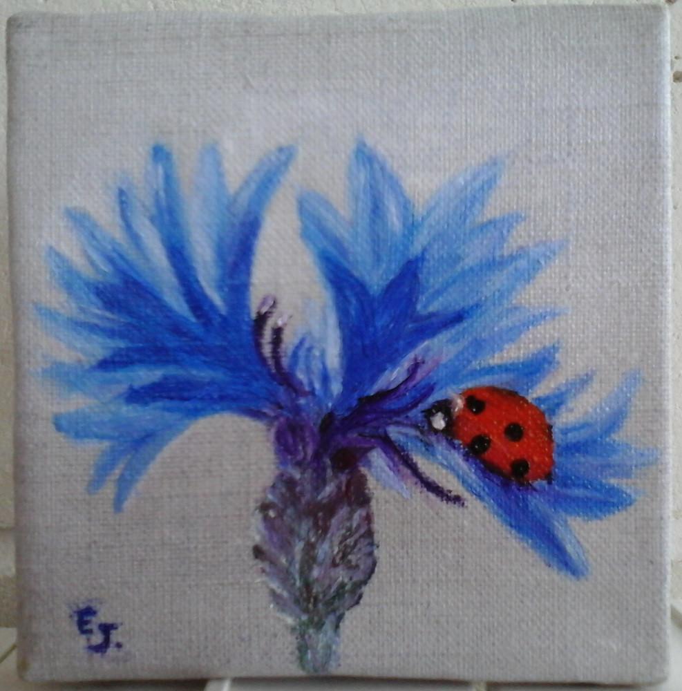 bleuet coccinelle