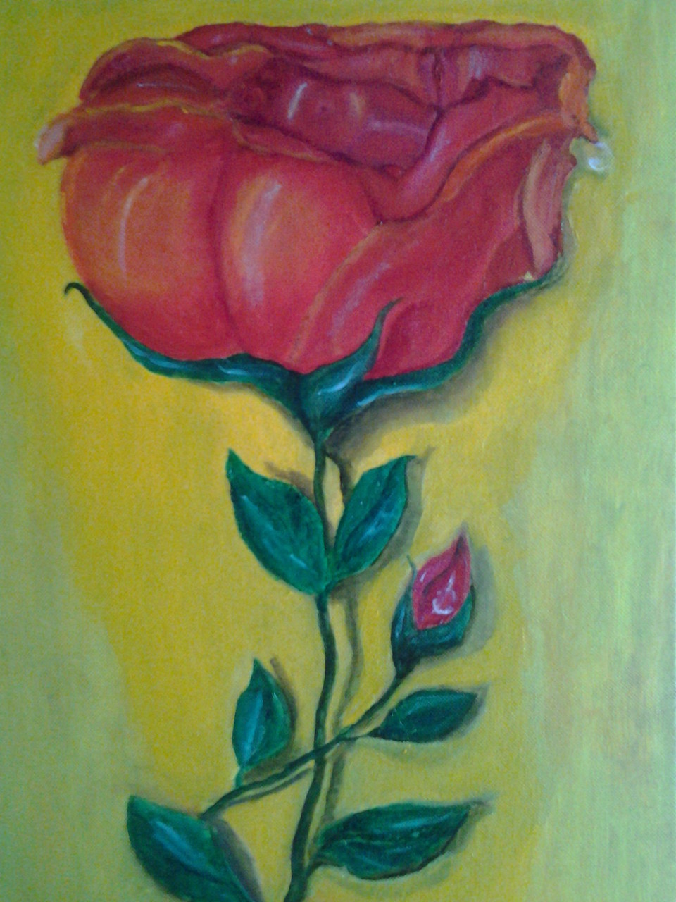 fleur coquine