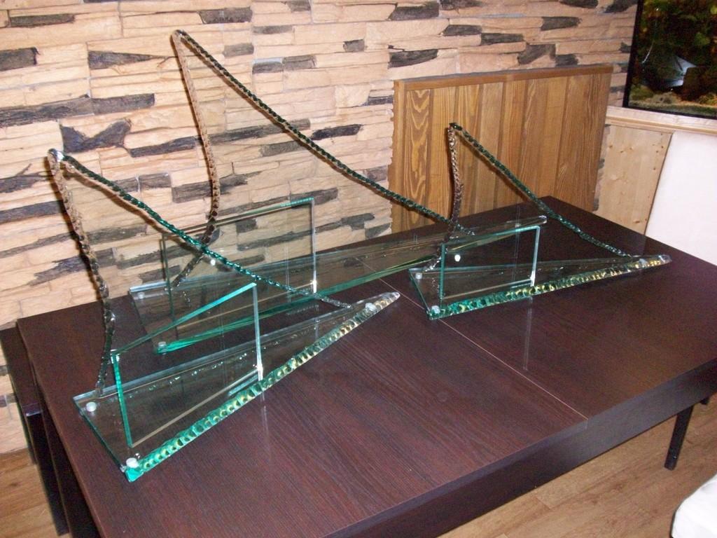 Drachenbootrennen Raabs - Pokale