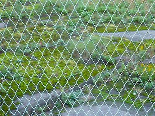 テニスコート横の調整池