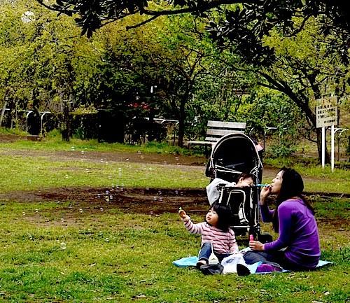 移動しまして羽根木公園