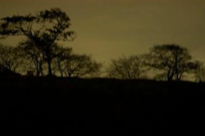 真夜中の風景。ね、灯りがなくても見えるでしょ