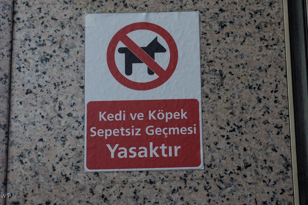 Auf die Art verstehe ich auch türkisch ;-)