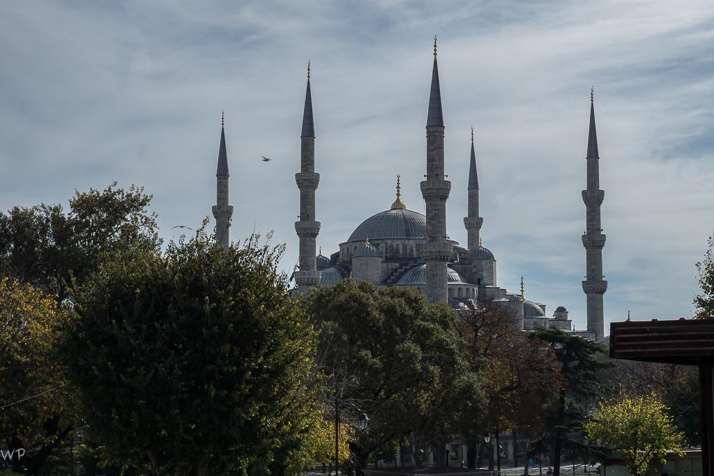 Immer wieder, Blaue Moschee
