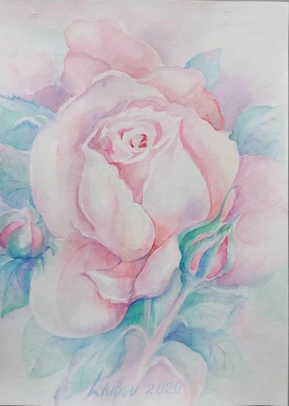Rose, Aquarell, 15x21 cm