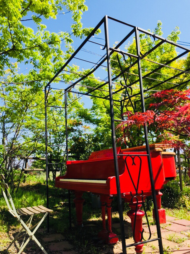 一ッ葉にあるグリーン美容室のお庭に真っ赤なグランドピアノが置かれてました。緑の新緑に映えてました🌿❣️