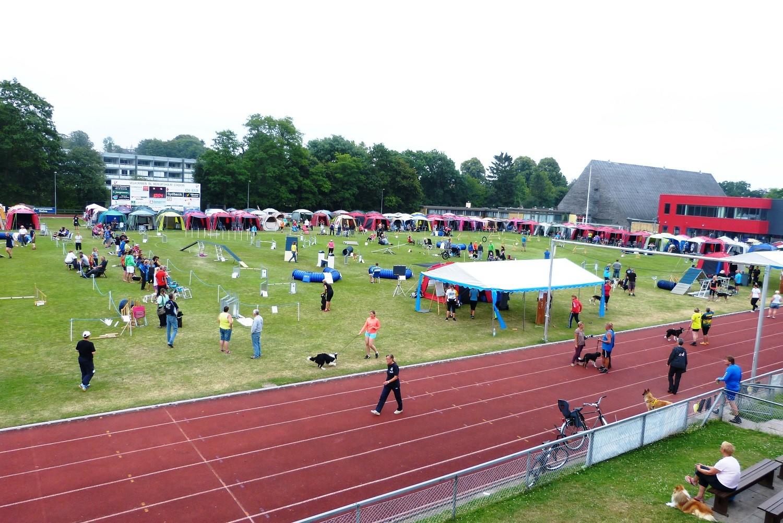 wieder am Herlufsholm Sports Centre