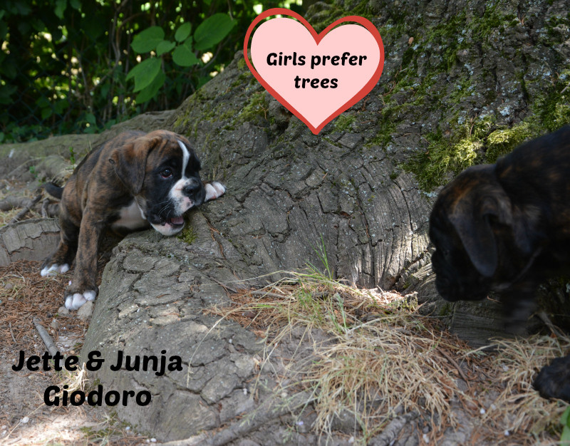 Jette & Junya Giodoro - 16.06.2014