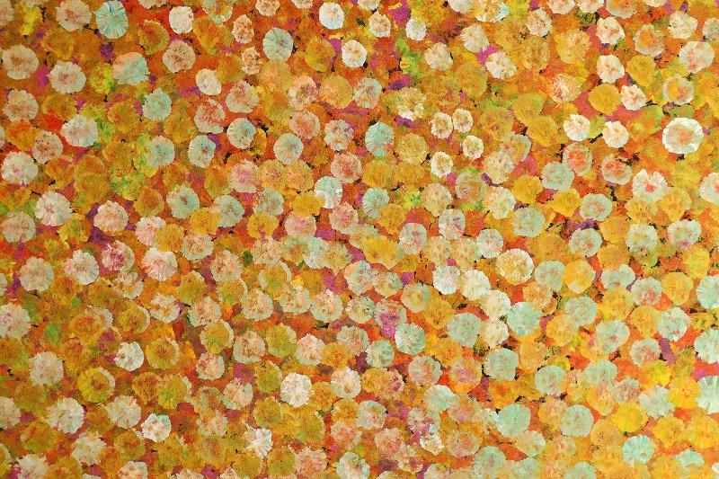 エミリー・ウングワレー 「マイ・カントリー」 57x97cm