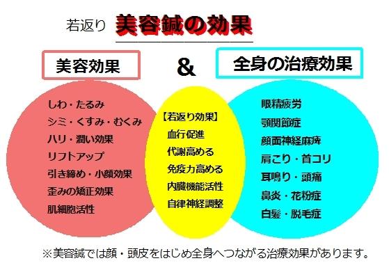 美容鍼 銀座 東京 目黒 鍼灸院