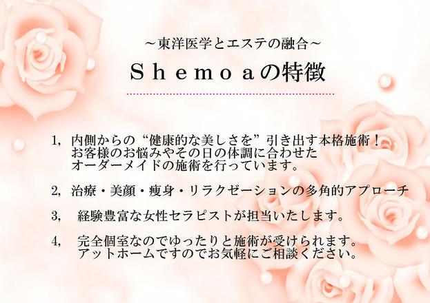 Shemoaの特徴