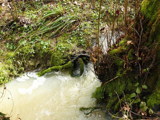 Bouillonnements sur le ruisseau du Campot - ©M. H. CINGAL 2010