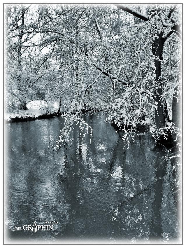Schneezierde - Gersprenz © Jennie Bödeker
