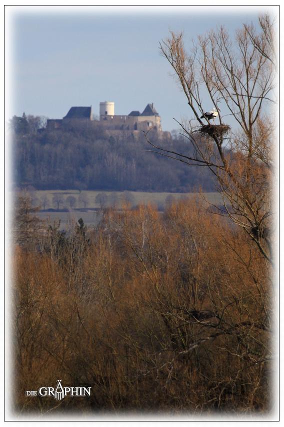 Storchennest mit Otzberg - Reinheimer Teich © Jennie Bödeker