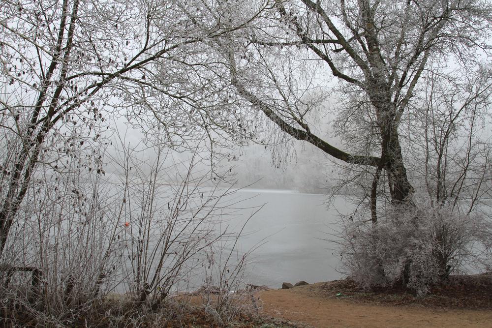 Tiefgefrorener Teich