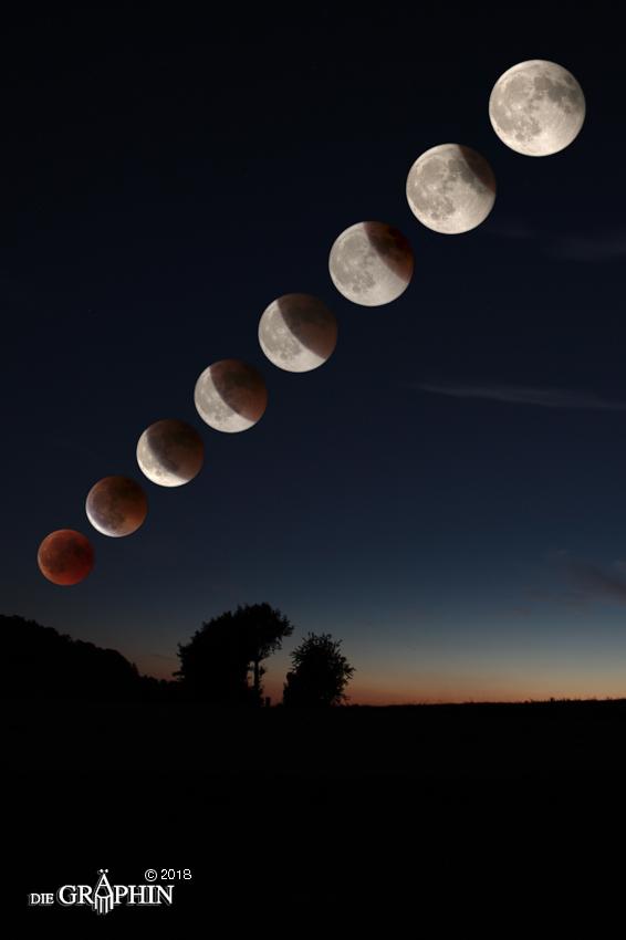 Komposition des Verlaufs der Mondfinsternis © Jennie Bödeker