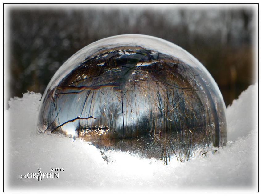 Wintertraum - Reinheimer Teich © Jennie Bödeker