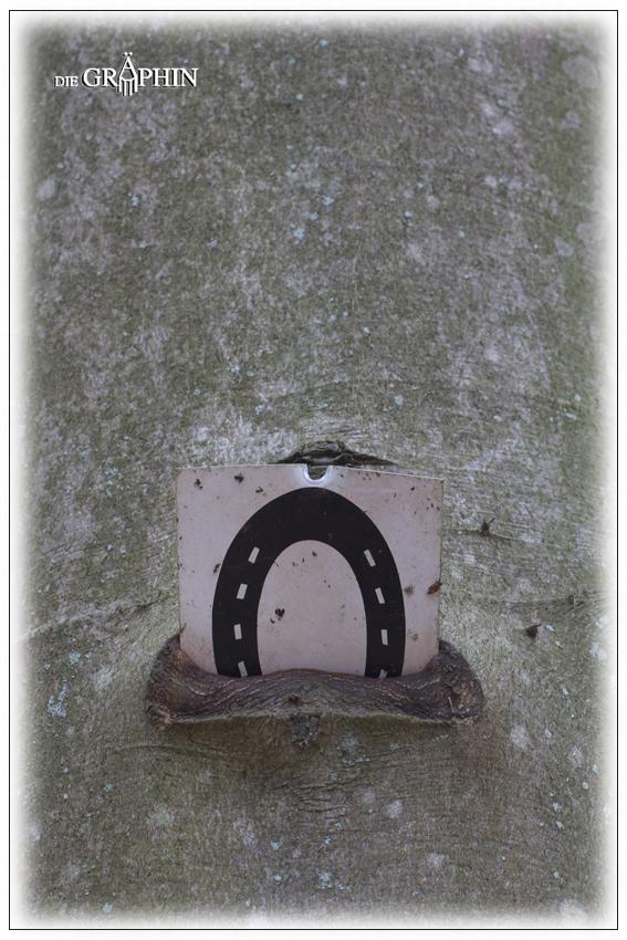 Baum frisst Schild Nr. 1 - Wald bei Gundernhausen © Jennie Bödeker