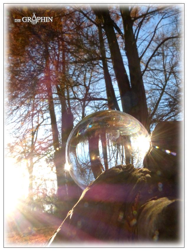 Waldlichtung-Kugel - Botanischer Garten DA © Jennie Bödeker