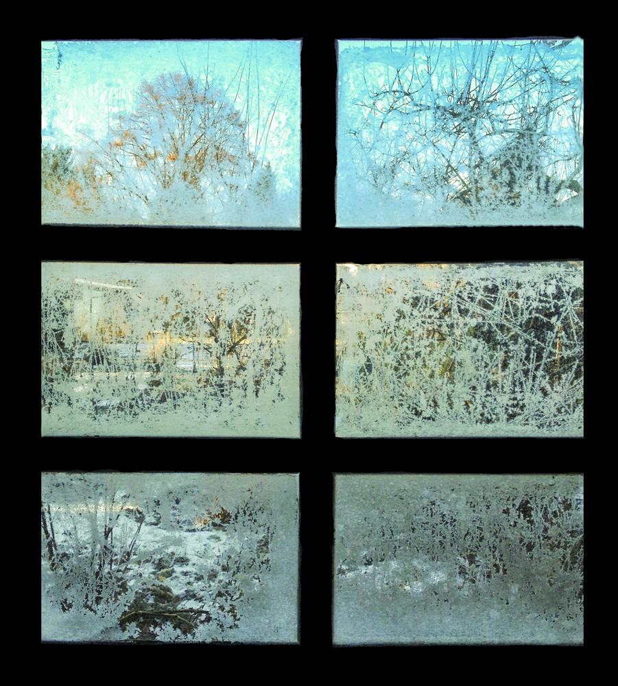 Eisiger Wintergarten - Darmstadt © Gerhard Schweigert