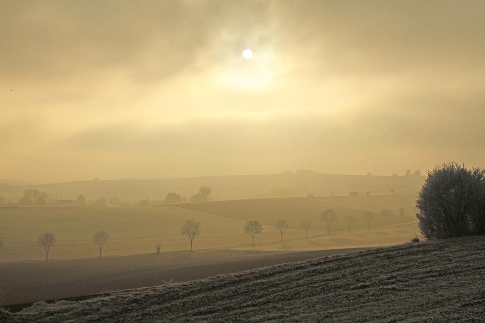 Winterlandschaft - nördlich von Ober-Ramstadt © H. G. Abt