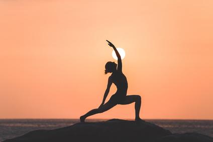 Yoga Übung Krieger IV Asana Hatha Yoga