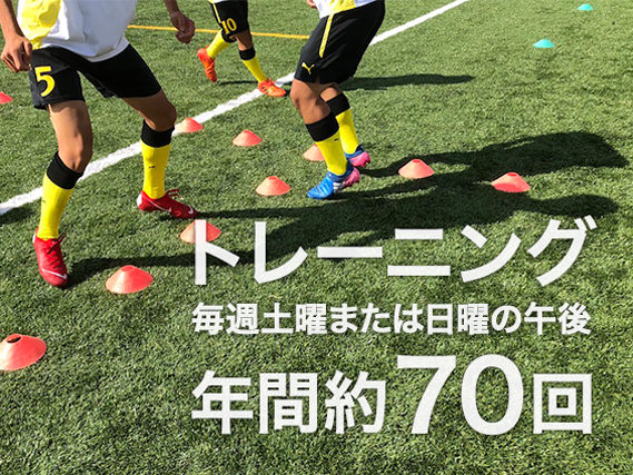 トレーニングは年間約70回
