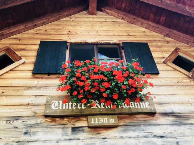 Alpe Untere Reuterwanne Wertach Natur Ausflug mit Familie