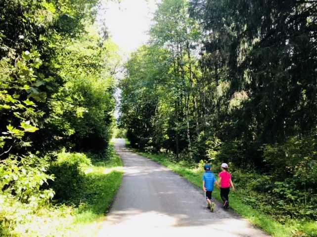 Wandern in der Natur Wald mit Kindern