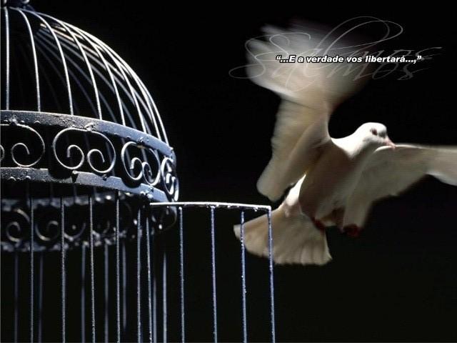 E conhecereis a verdade, e a verdade vos libertará. João 8:32