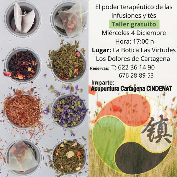 Taller infusiones