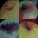Petit_PommeVerte-1-2-3-4 (14 x 14) x 4 14/09/2013