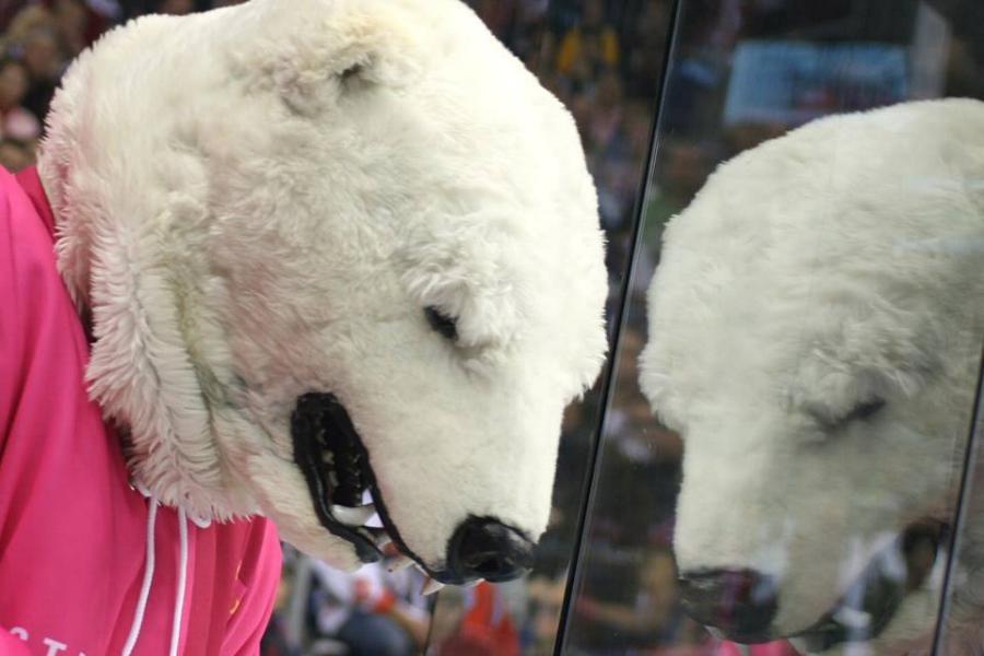 Auch Maskottchen Bully trägt Pink.